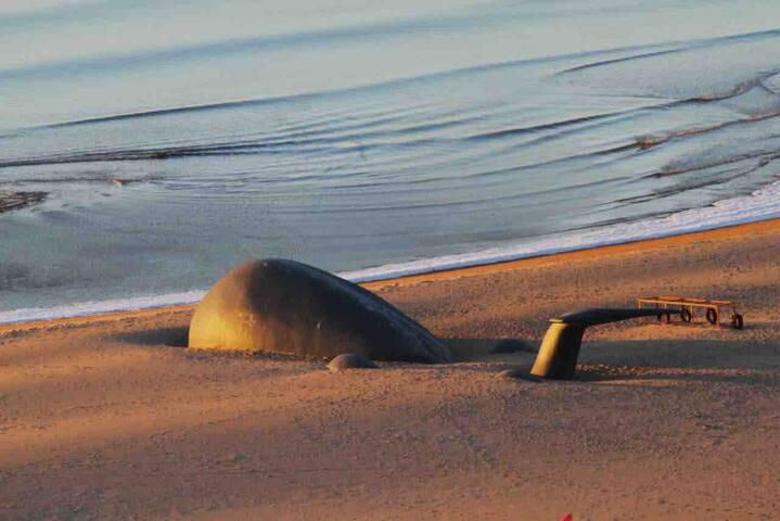 海碧台门前的海滩