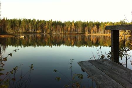 Wilderness cottage in the middle of Finland - Viitasaari - Blockhütte