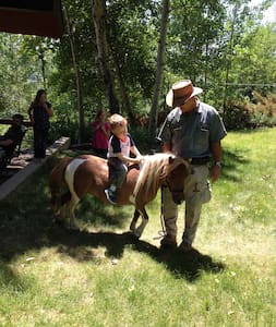 Miniature Horse Lovers, Violet Room - Lander - Casa