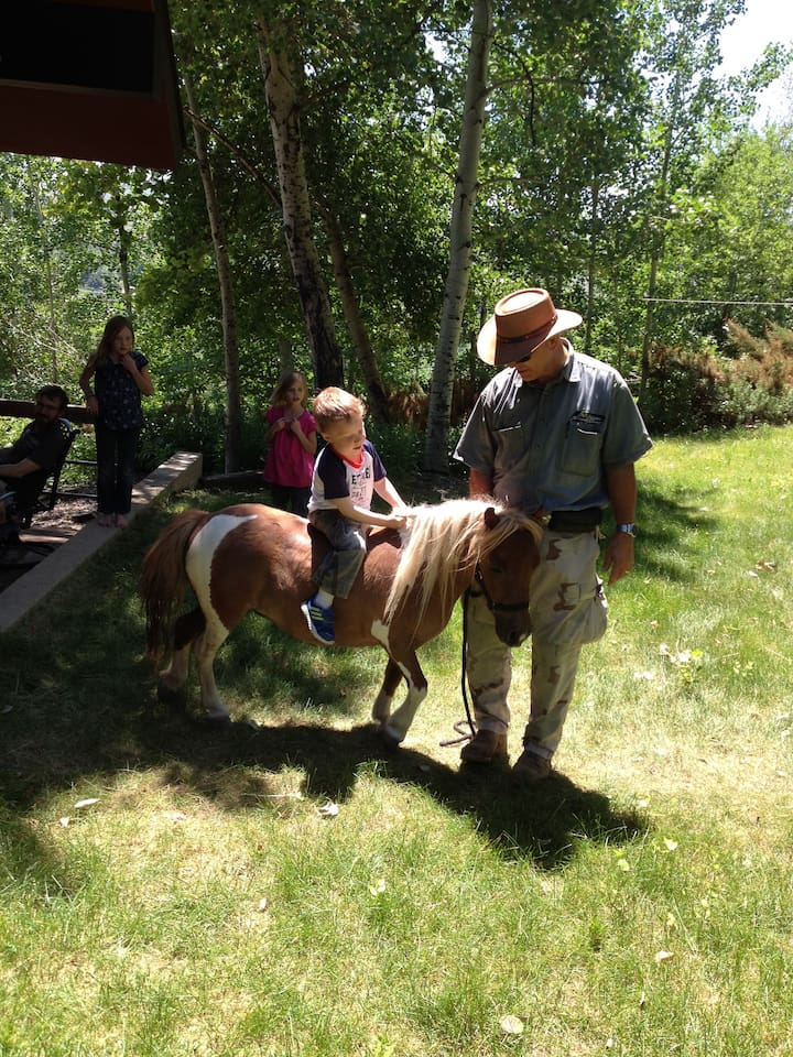 A child's first experience with or on a horse in an experience of a lifetime!