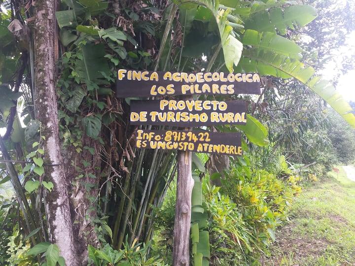 Cabaña en plena naturaleza en Finca Los Pilares II