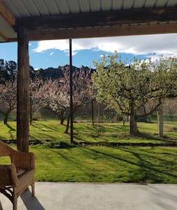 Stay in a orchard just outside of Clyde.
