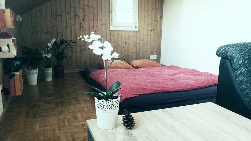 Gemütliches Schlaf- und Wohnzimmer nahe Bern