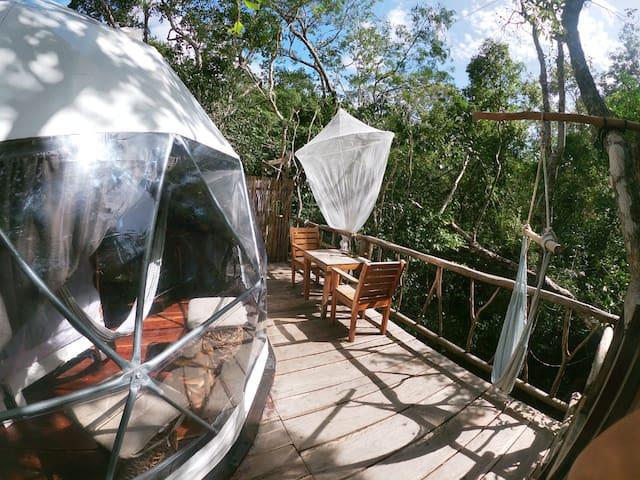 King size Jungle Eco-treehouse close to cenotes
