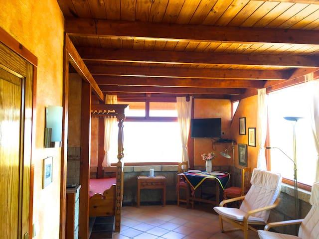 Bergfincahäuschen - arico - Casa