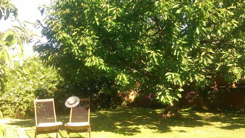 Preciosa vivienda con jardín - Gijón