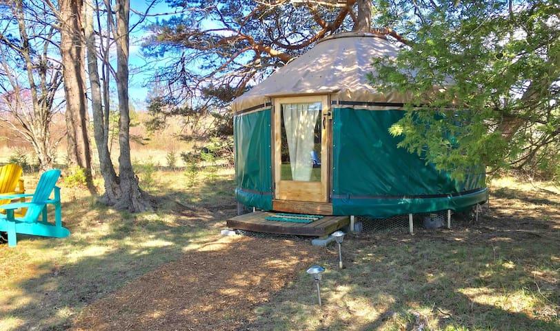 The Puffin Yurt