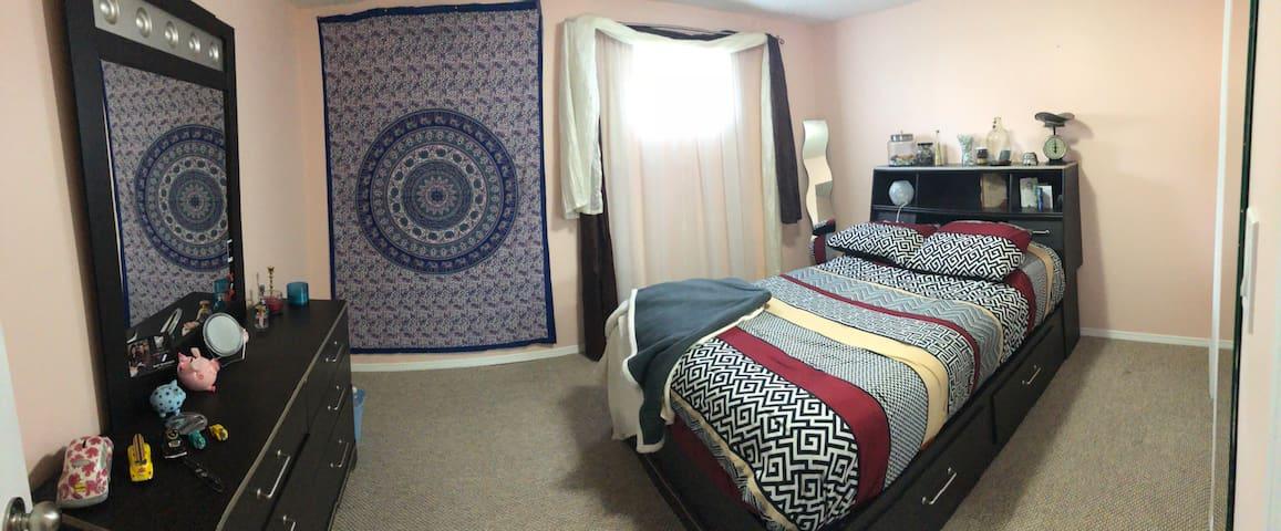 Edmonton Spacious basement suite