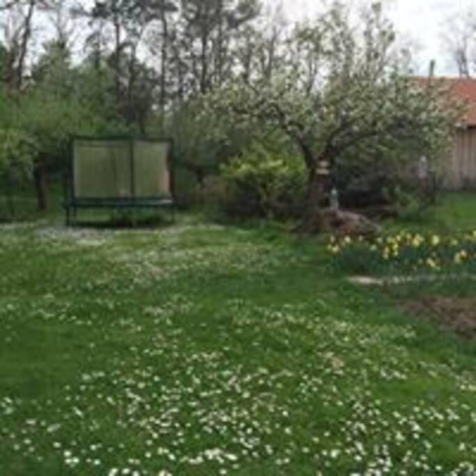 Záhrada s detským ihriskom (trampolína, smyklavka, pieskovisko) a miestom pre opekanie