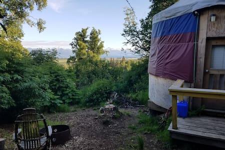 Cozy Yurt East of Homer