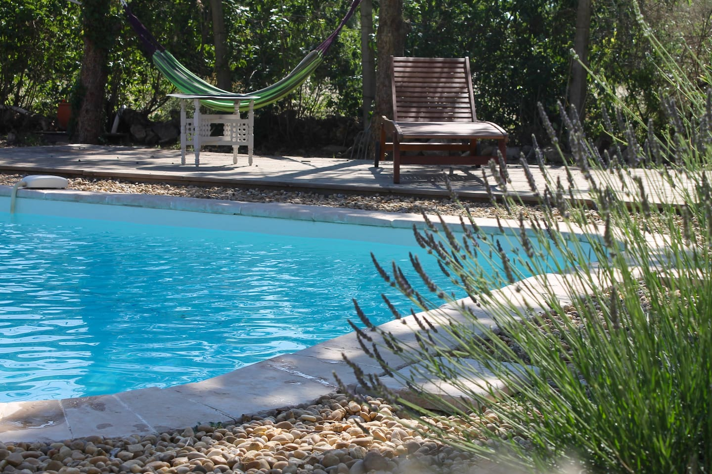 Gorgeous pool with hammocks and loungers
