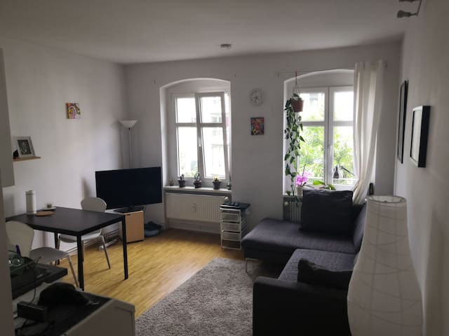 Nice apartment in Mitte close to Mauerpark