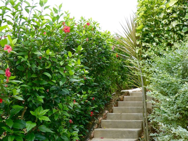 A private flight of stairs lead to the entrance of the studio among hibiscus and tropical plants.