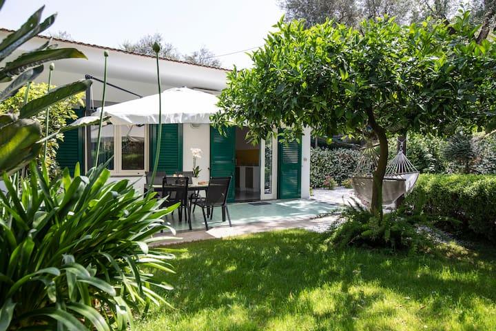 "Casa Mary Sorrento - "" Appartement en citron """