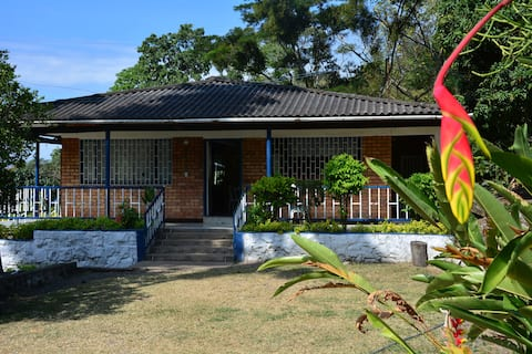 Property rental in Mesitas del Colegio