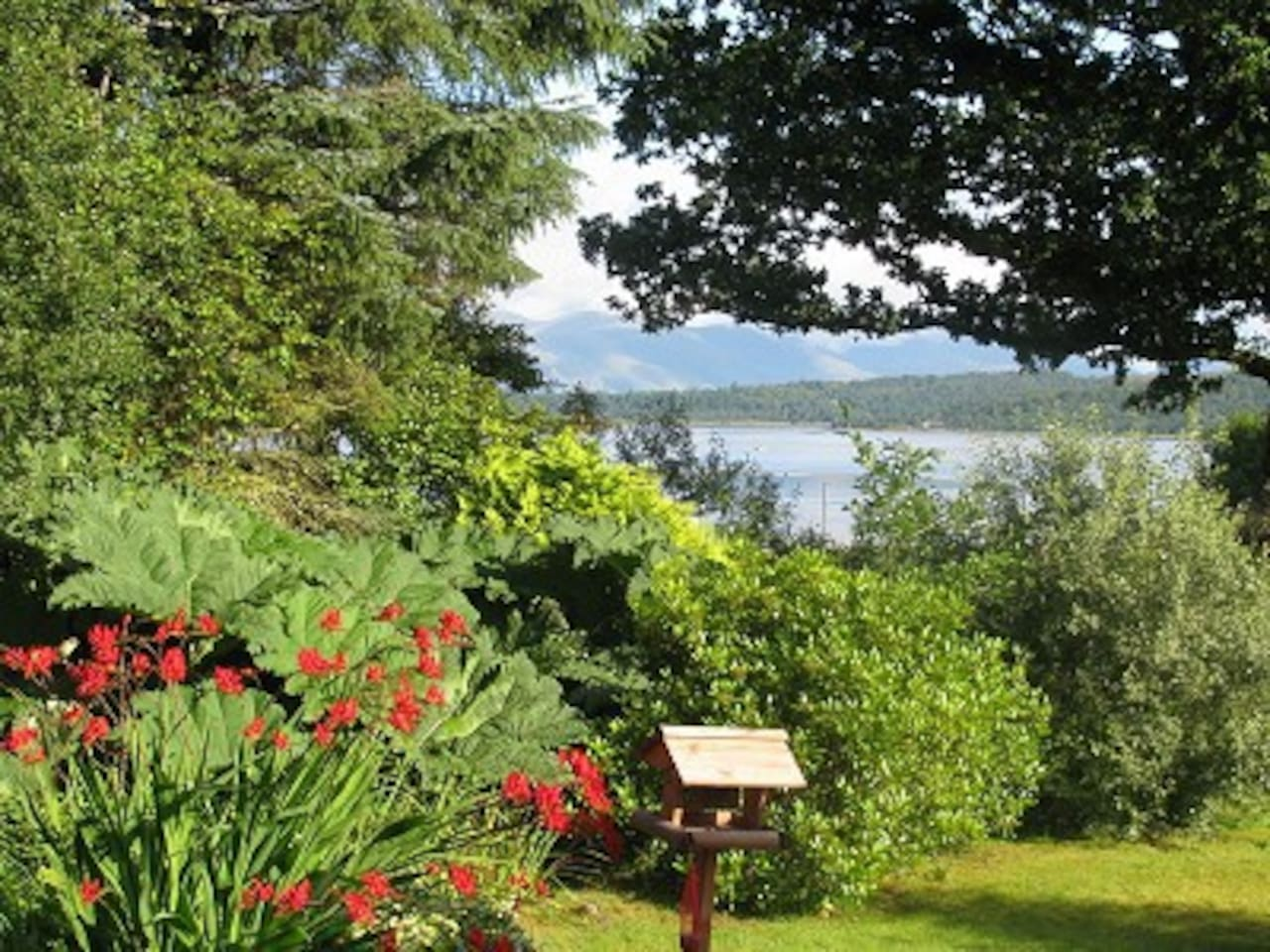 Looking out from the garden across Loch Creran