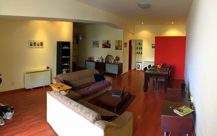 Central Modern Bright Rooms & Welcome Bottle Wine - Nikosia - Wohnung