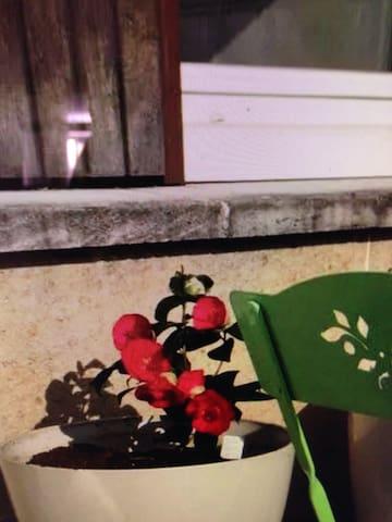 charming room - pidigan - Lägenhet