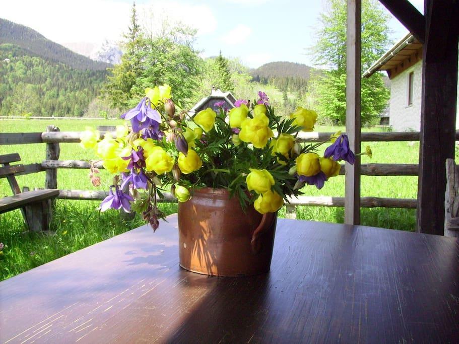 A springtime bouquet