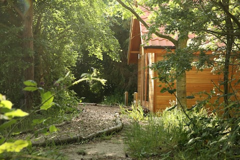 Romantyczny las TinyHouse by stone circle valley