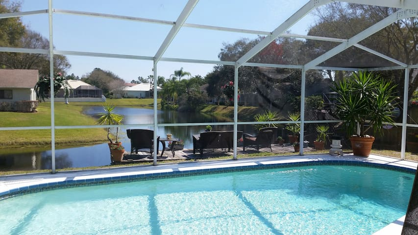 GORGEOUS Lakefront Pool Home - Tarpon Springs - House