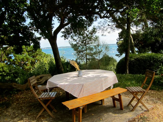 Villa 1ère ligne,  accès direct mer  - Cap Ferret