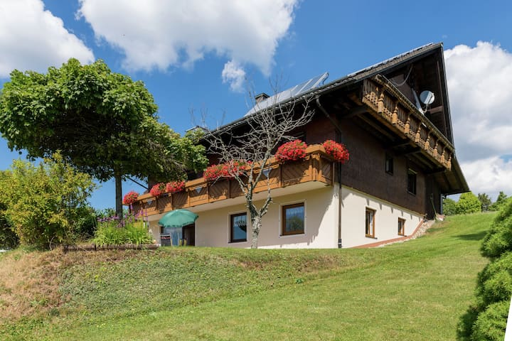 Beautiful, comfortable ground floor apartment in the Black Forest with private terrace