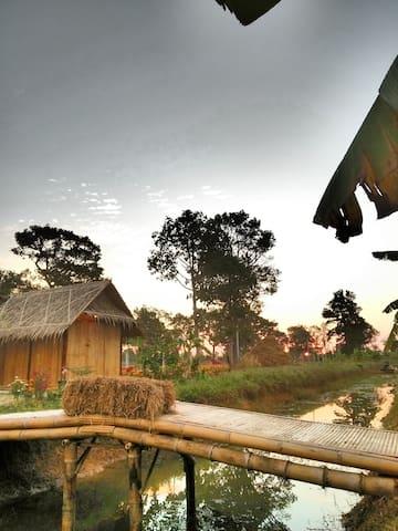 Nathasa Homestay