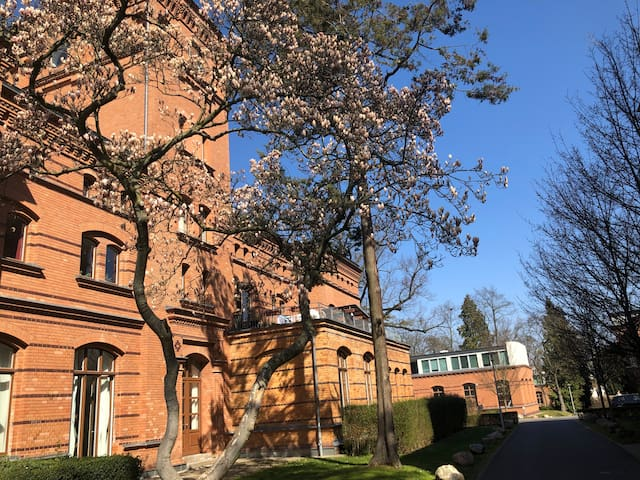 Historische Wohnung in Potsdamer Parklandschaft