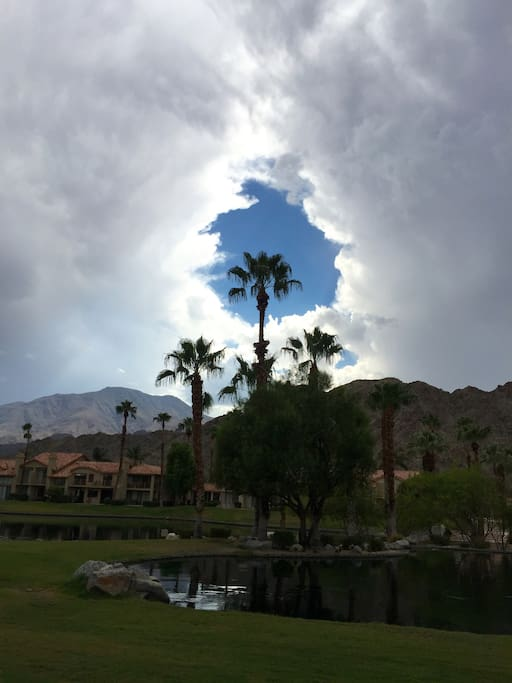Palm tree opening up the clouds