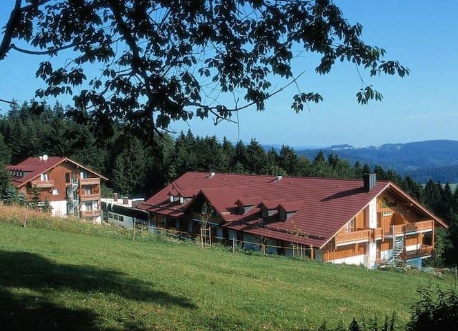 Apartment Mitterdorf - Bavorský les