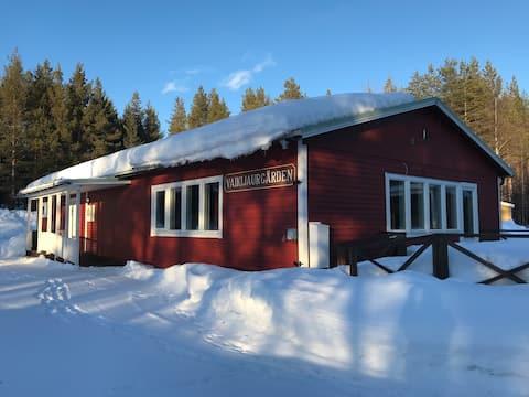 Skog och fjäll vid insjön Vaikijaur, Jokkmokk.