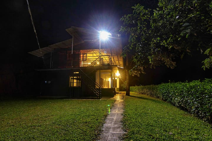 Family Room amidst Mudumalai forest