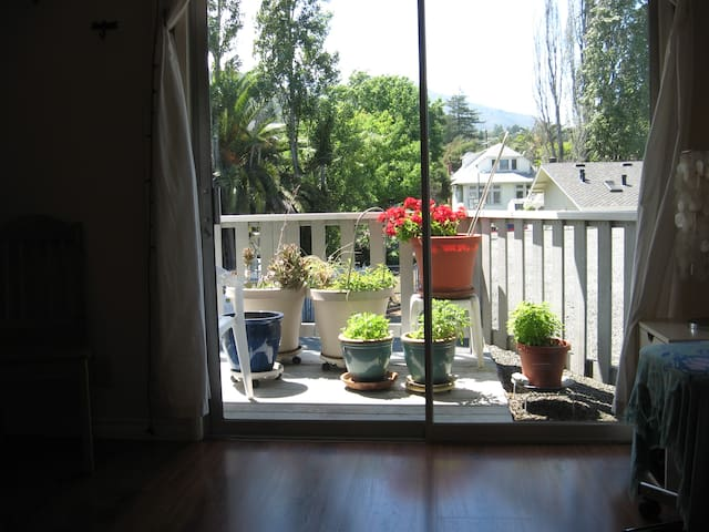view of the deck and Mt Tamalpais from the bedroom