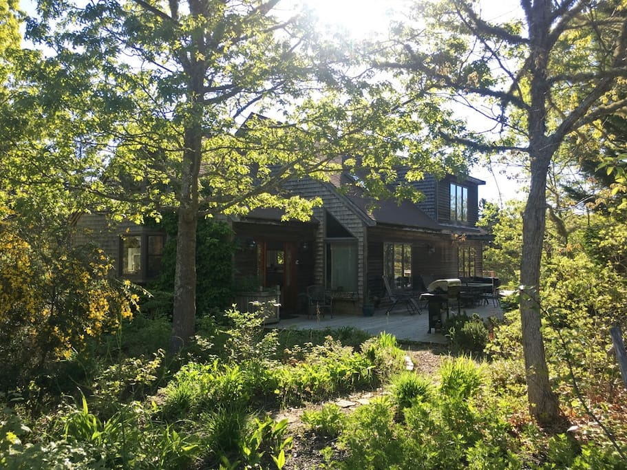 Nestled in the woodlands of the National Seashore with backyard access to Longnook Beach
