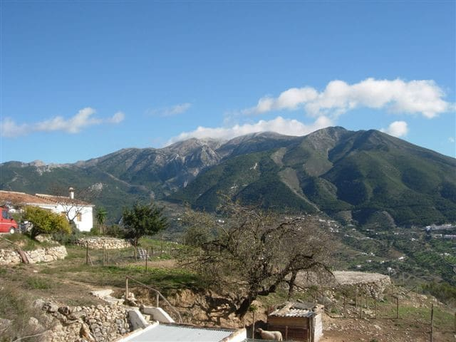 La Penquita: apartment in the hills - Alcaucín - Lägenhet