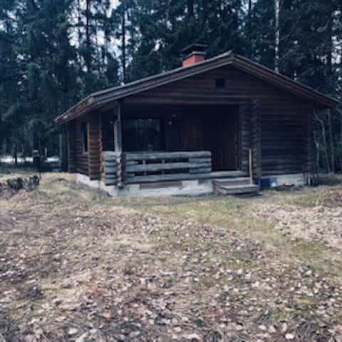 A peaceful Petäjävesi Log Cabin with Sauna by lake