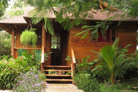 Apartamentos campestres tipo Cabaña de madera