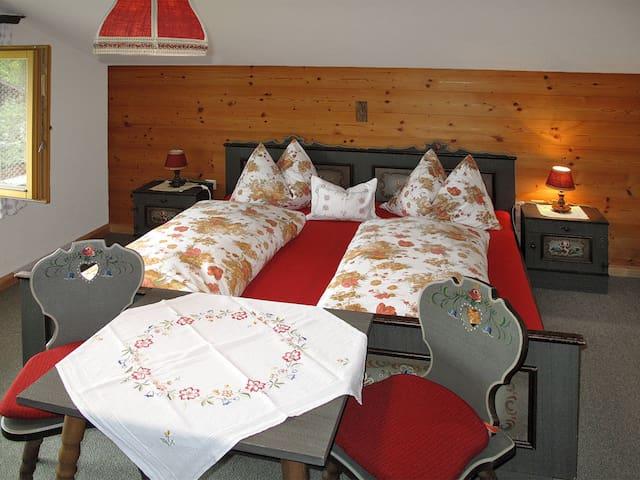Haus Zisterer - Ried im Zillertal - Lägenhet
