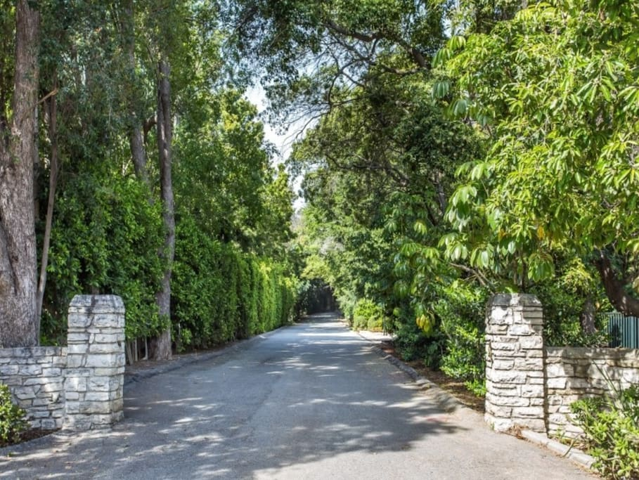 Private drive leads to huge motor court for ample parking and 3-car garage.
