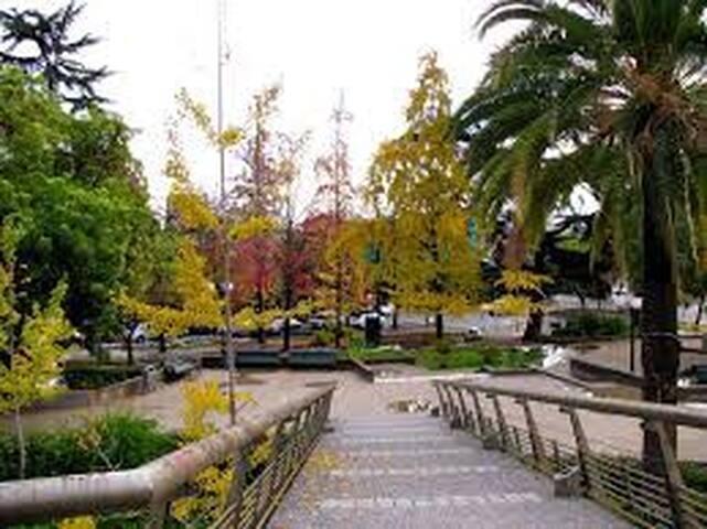 Barrio Plaza Pedro de Valdivia - Providencia