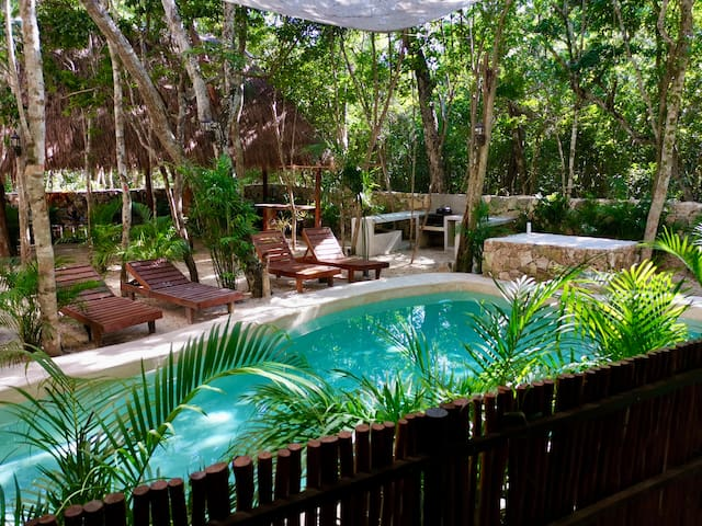 Homelike Apartment with amenities in Mayan Jungle