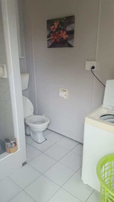 private bathroom with own shower toilet with laundry