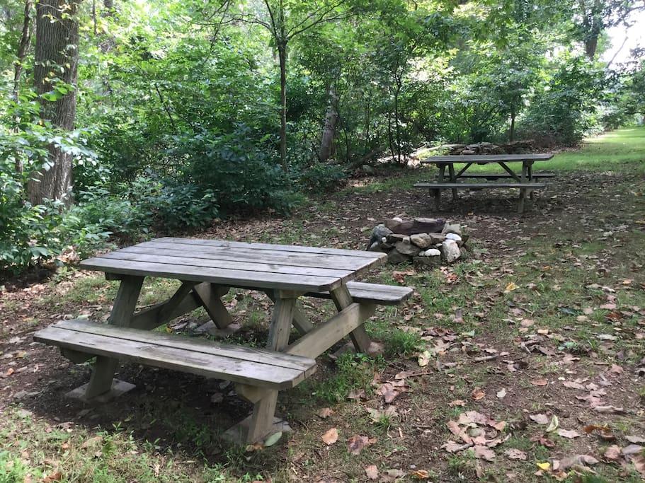 Picnic & Campfire Area