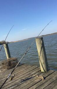 Peaceful by the Patuxent1