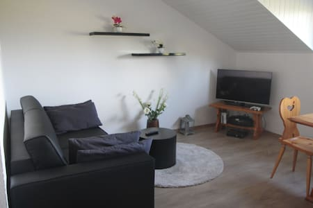 Confortable appartement de 2 pcs. - Vionnaz