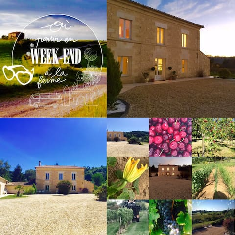 2 Privé Bed & Breakfast in Vines. - Flaujagues - Penzion (B&B)