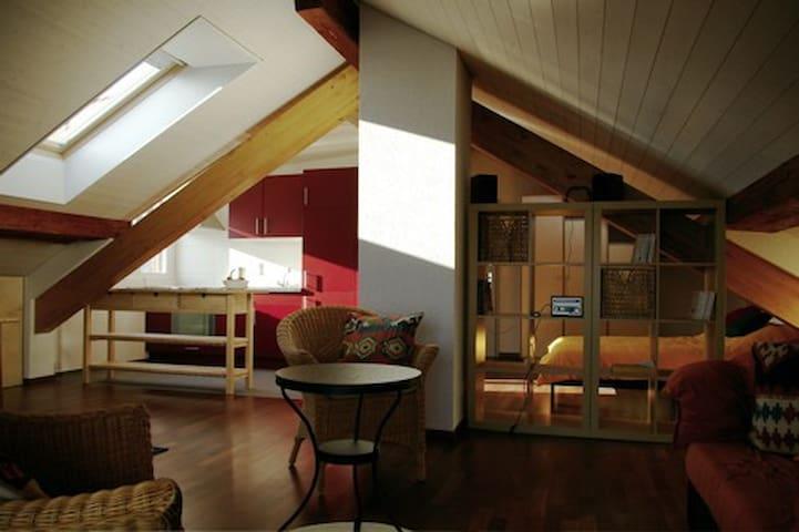 Grand loft tranquille dans maison villageoise