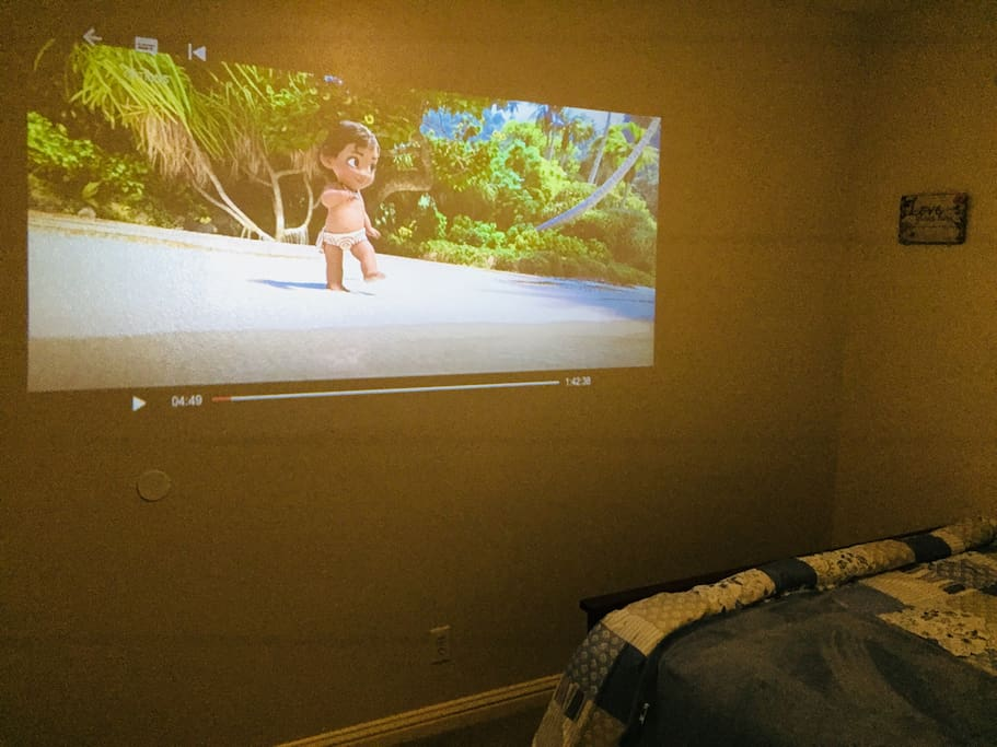 Over 100 inch Theater Experience with Netflix and Amazon Videos right in your room!