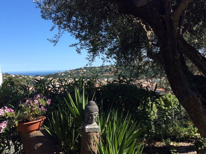 Maison vue mer, gde terrasse jardin